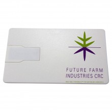 USB Business Gizmo Card